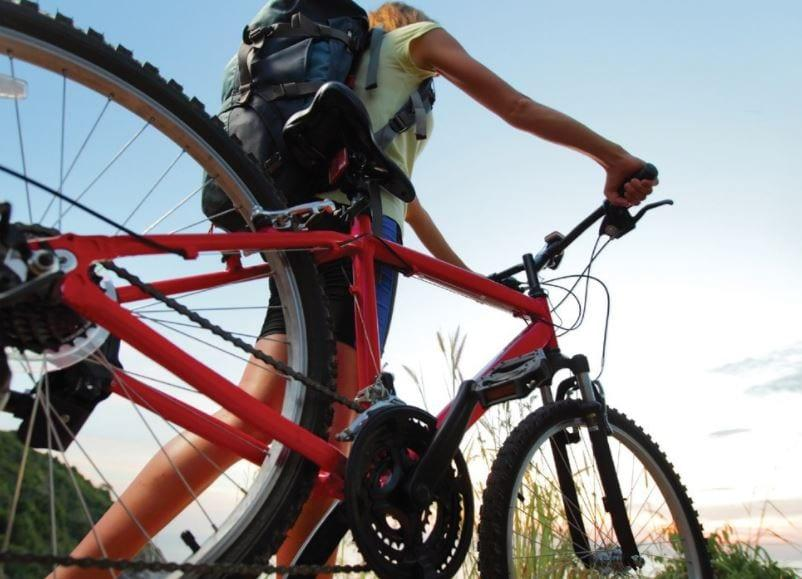 Get on your bike for guided cycle rides around borough