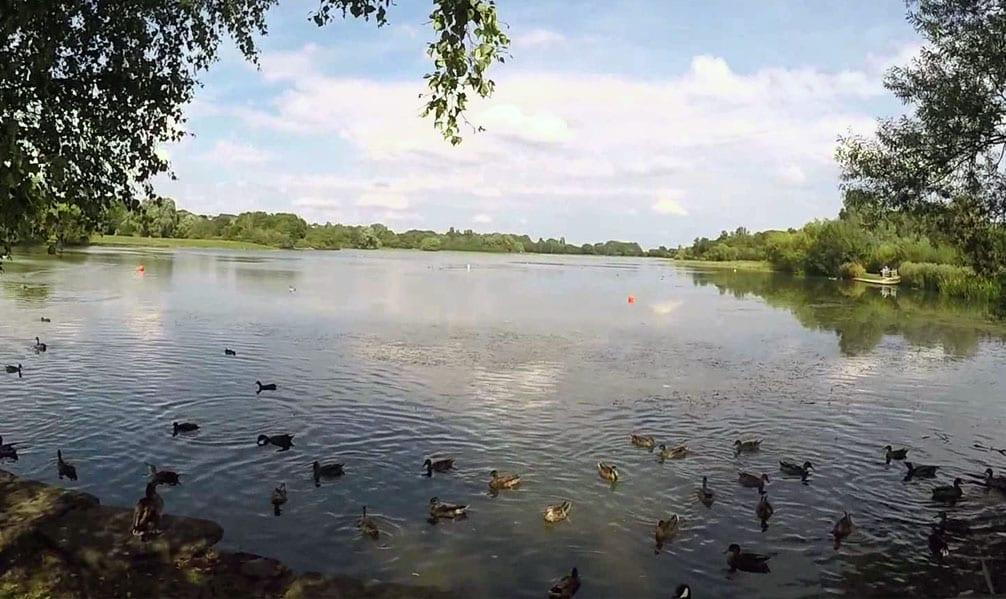 Volunteers wanted to help improve Colwick Country Park