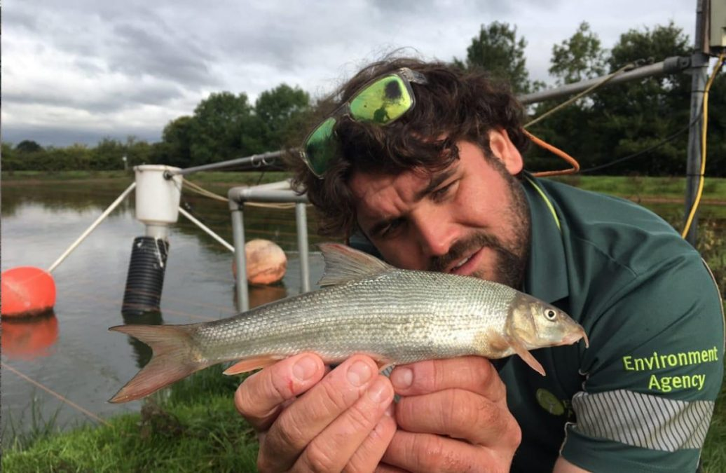 Plenty more fish in the rivers